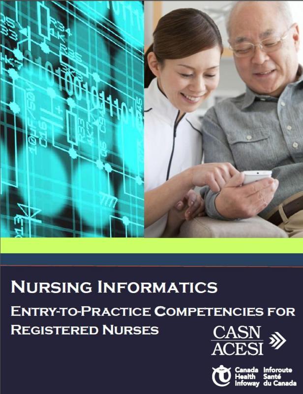 nursing informatics theory essay