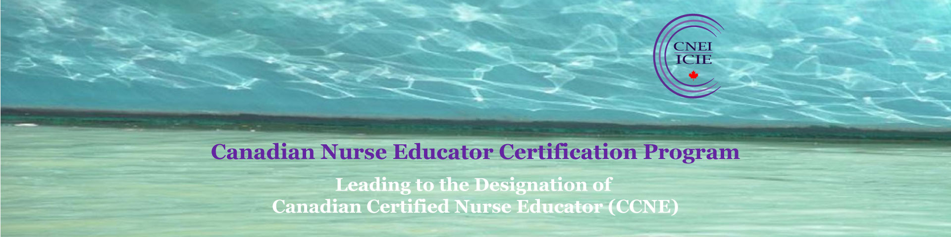 Nurse educator certification program canadian association of the designation canadian certified nurse educator ccne the ccne is an important marker of professional excellence for nurse educators in canada 1betcityfo Image collections