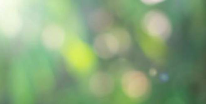Lignes directrices de formation infirmière de premier cycle sur les maladies à transmission vectorielle liées à la variabilité climatique